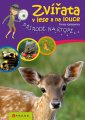 Zvířata v lese a na louce - Přírodě na stopě